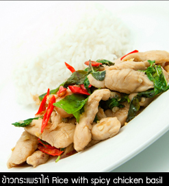 ข้าวกระเพราไก่ Rice with Spicy Chicken Basil @DangDum Thepprasit Pattaya